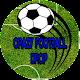 Crazy Football Drop (game)