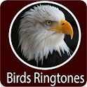 Birds Sounds icon