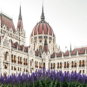 Parlament, Budapest, Hungary by Elena Lashneva - Buildings & Architecture Public & Historical ( budapest, parlament, hungary )