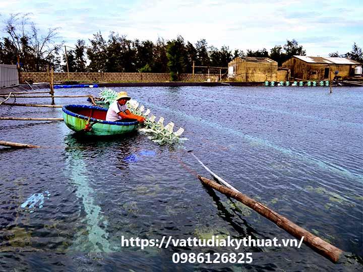 Mô hình nuôi tôm sử dụng bạt nhựa HDPE lót ao hồ phát triển mạnh ở Quảng Trị