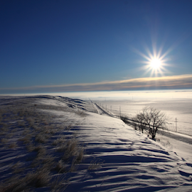 Cold Sunrise by Brian Robinson - Landscapes Prairies, Meadows & Fields