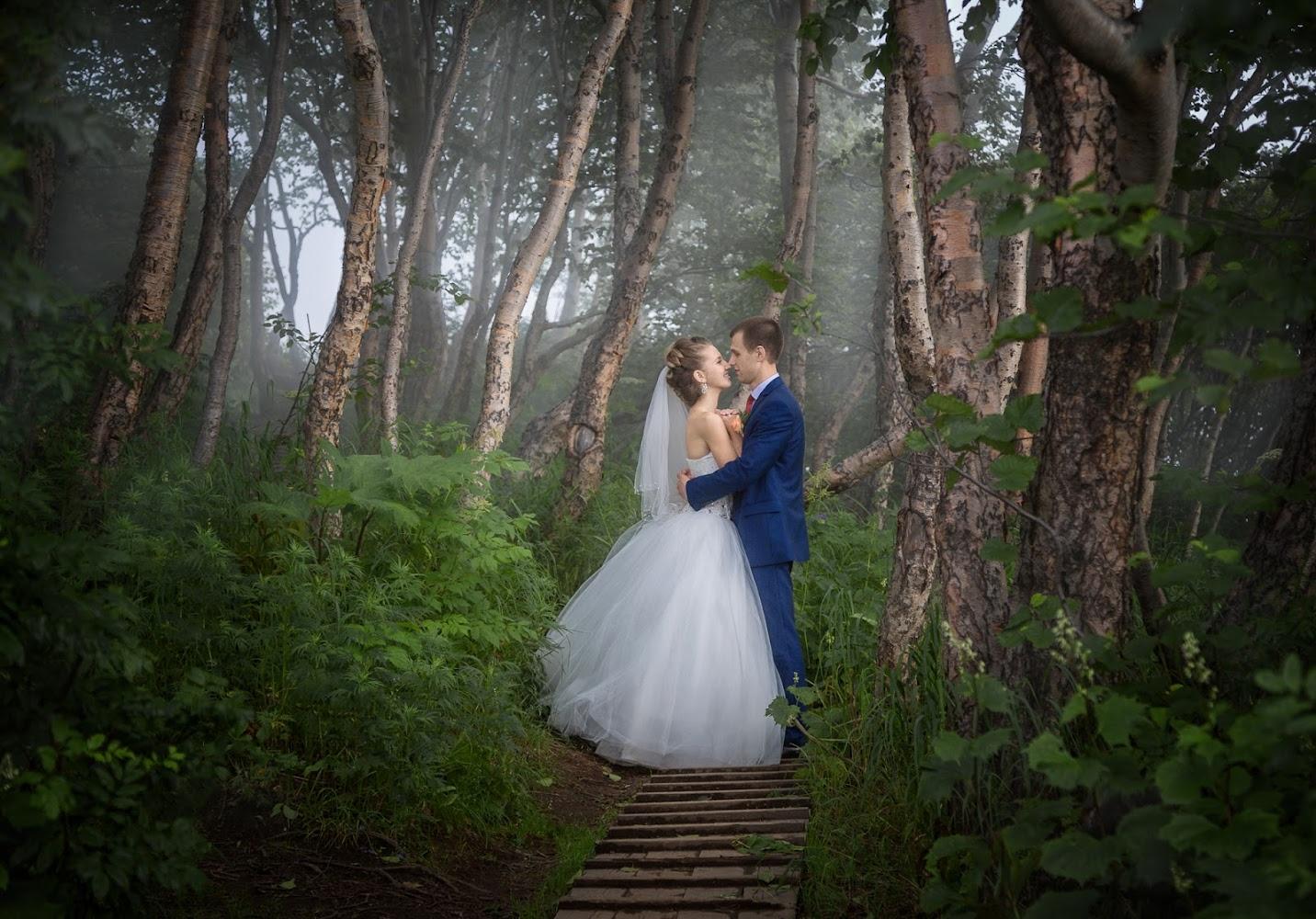 свадебные фотографы петропавловск камчатский голливудская