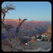 Grand Canyon - Live Wallpaper