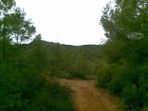 Photo: El pino de la Virgen, desde el PR2, Burete, Ceheg�n, Murcia, Spain-desde mi Nokia E61i