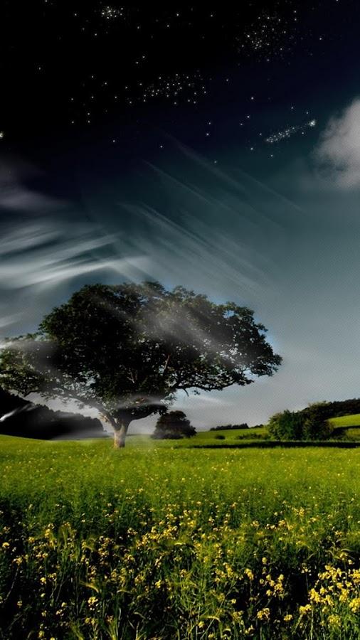 تطبيق رائع يسمى خلفيات اندرويد صور جميلة