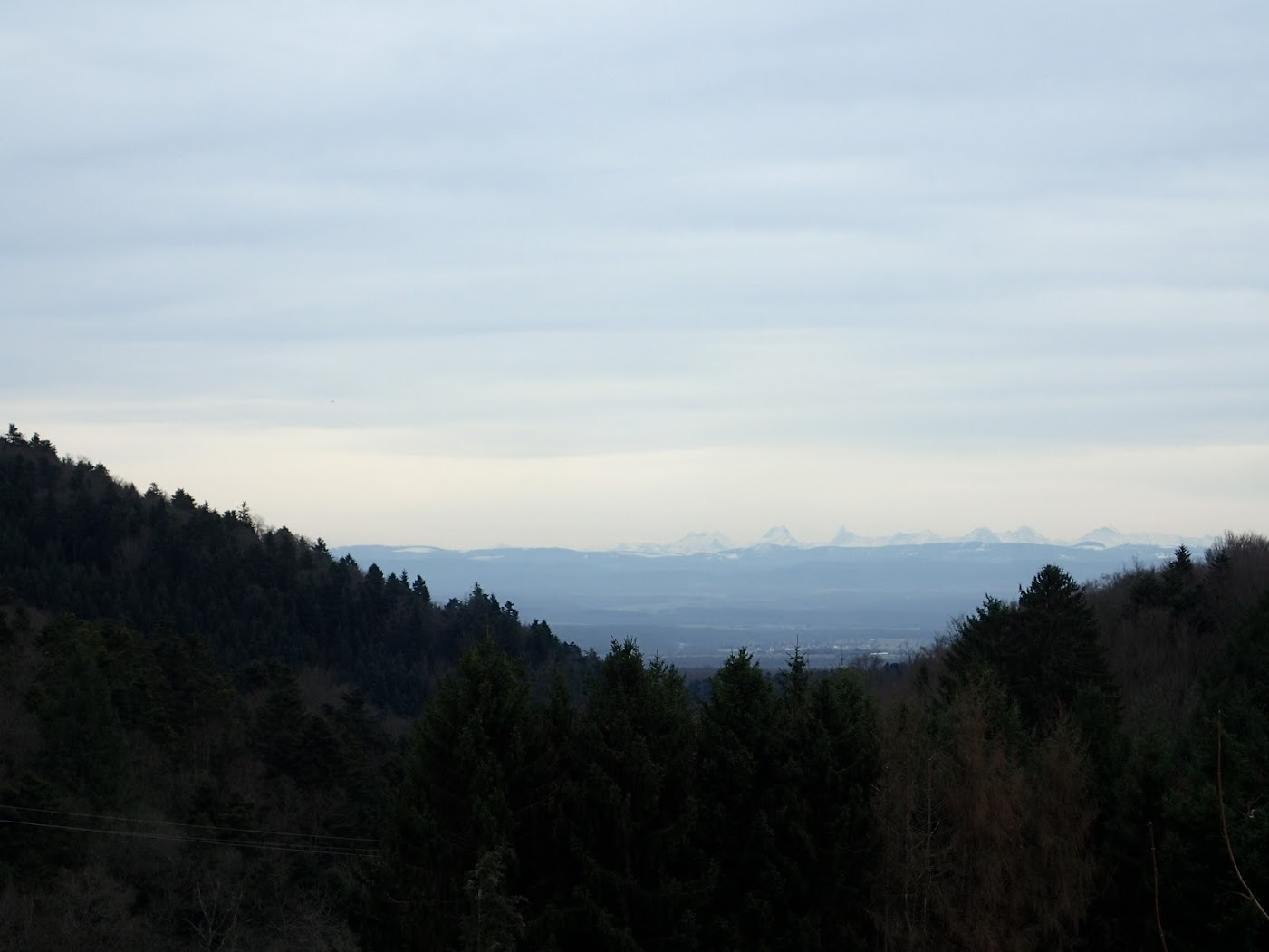 Au loin les Alpes bernoises depuis Bourbach