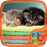 App Kitties Theme for GO Launcher apk for kindle fire