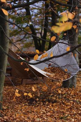 sogni d'autunno di anna_perasso