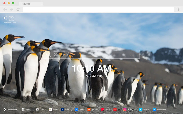 Penguin New Tab Page HD Animals Themes