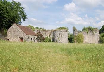 château à Provins (77)