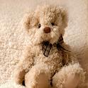 Teddy Bear Wallpaper Hd icon