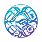 NVS Explorer icon