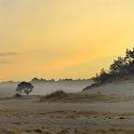 De Loonse & Drunense duinen