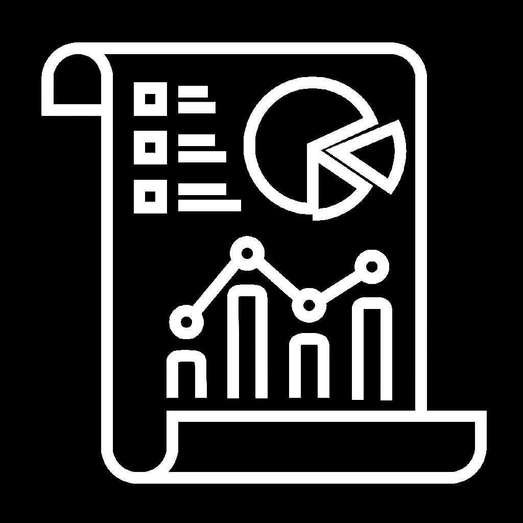 Search Engine Optimization Report Icon