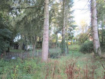 terrain à La Meauffe (50)