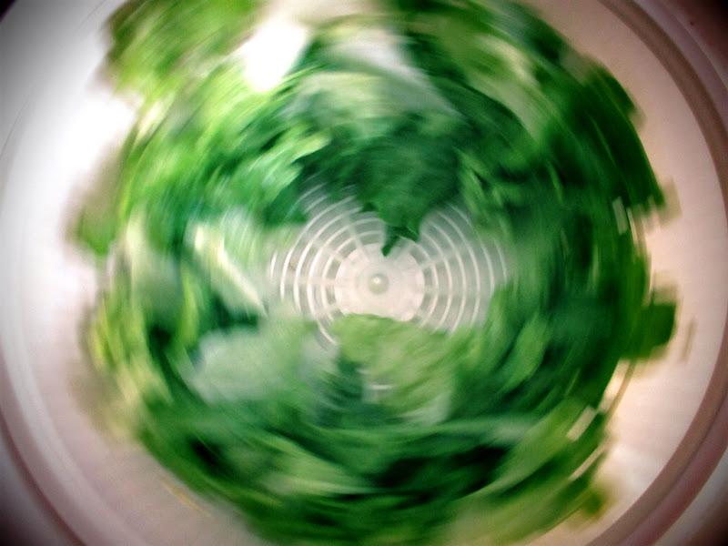 Insalata in centrifuga di LunaStorta