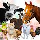 Speak Animals Download on Windows