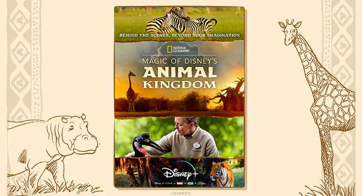 Magic of Disney's Animal Kingdom Now On Disney Plus