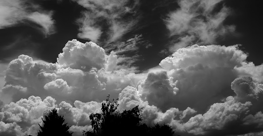 Storm Clouds by Randy Young - Black & White Landscapes
