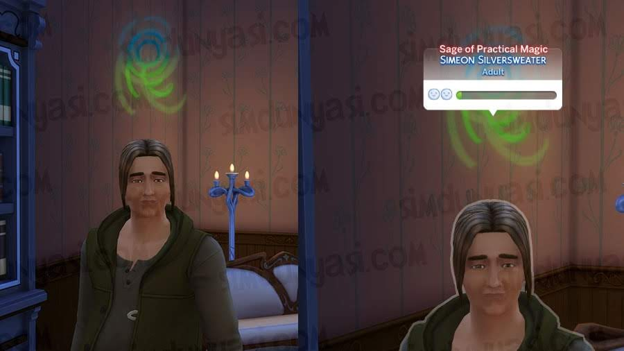 The Sims 4 Realm of Magic Sage of Practical Magic