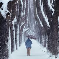 Verso l'inverno di