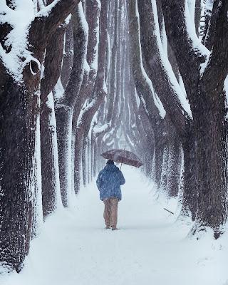 Verso l'inverno di maxlazzi