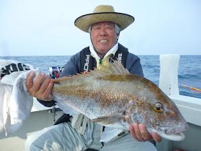 Photo: えへへ。男前の真鯛、4.8kgでした!さっき、サメに食われた真鯛は、これより大きかったです。