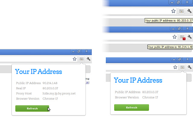 View IP address