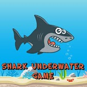 Shark Underwater Game