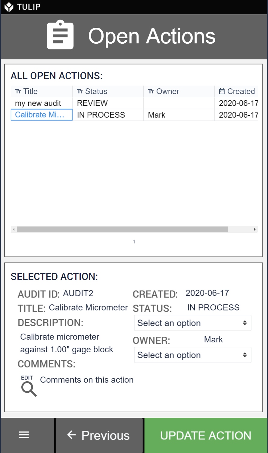 Picture of a process audit checklist application showing how open actions are tied to audit results