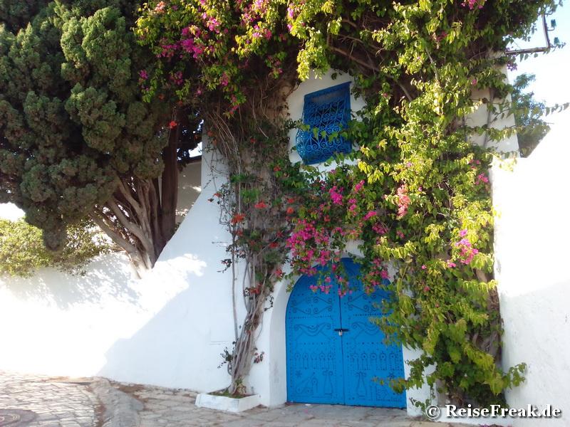 tunesien sidi bou said ein farbenrausch in blau reisefreaks reiseblog. Black Bedroom Furniture Sets. Home Design Ideas