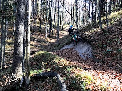 Zwiesel trails mtb - Oct 19