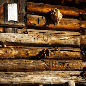 Lucky fall by Iulia Georgescu - Buildings & Architecture Other Exteriors ( mountains, wood, shelter, autumn, luck, fall, sheep, corn, iron )