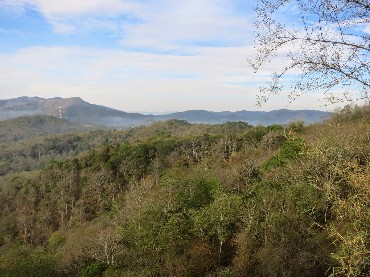 India. Kerala Motorbike Road Trip. Jungle Forest around Thekkady