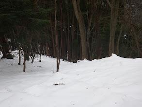 尾根の終端前で右の谷へ