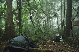 Photo: Jungle Forest-Makingfirer-3 Days Nam Ha Jungle Camp in Luang Namtha, Laos