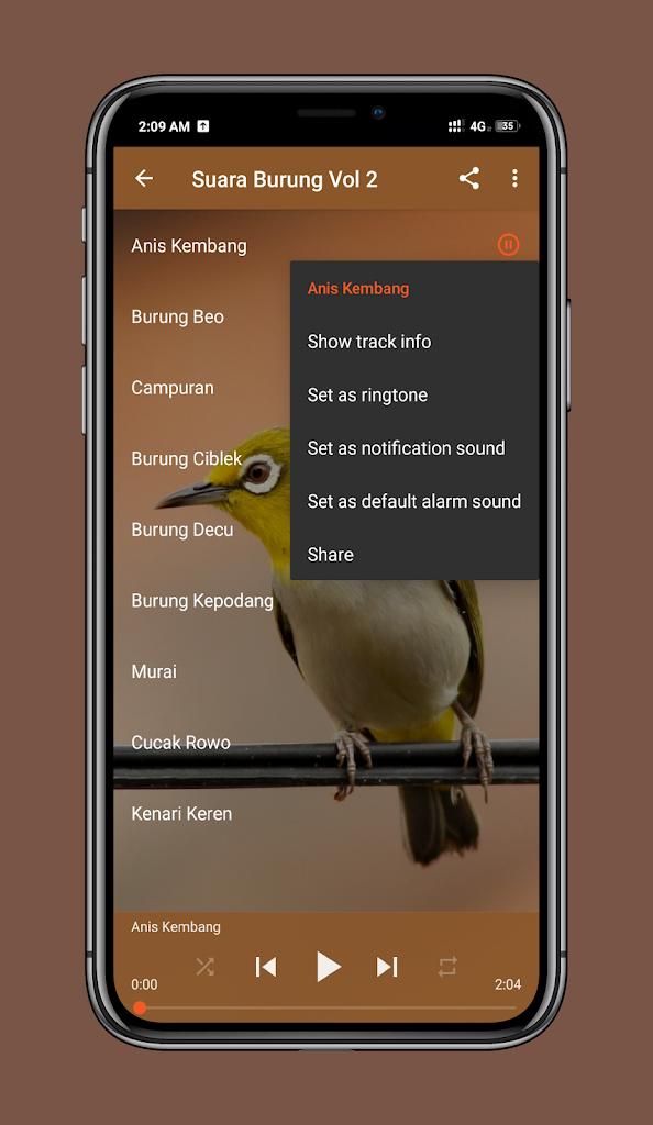 Suara Burung Decu Kembang : suara, burung, kembang, Suara, Burung, Lengkap, Android, Télécharger