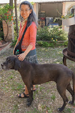 Photo: Florine with the winery dog at Fongoli