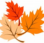 Image result for fall leaf logo
