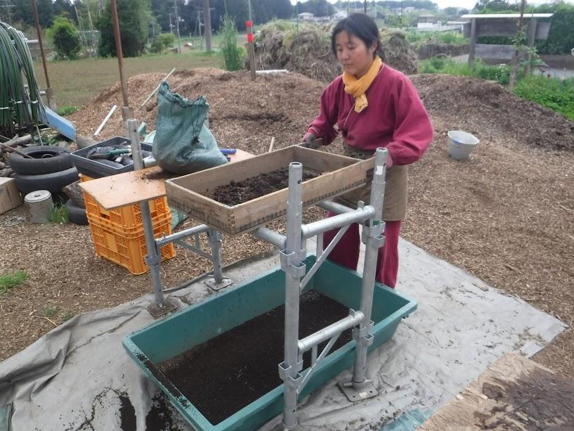 土が足りなくなったので草堆肥をふるいます