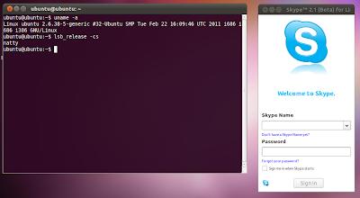 Skype Ubuntu 11.04
