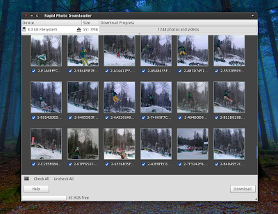 Rapid Photo Downloader 0.4.0