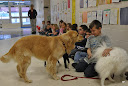 Therapy Dogs at Bluff View
