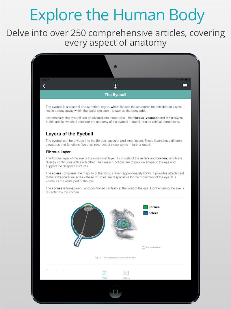 Teach Me Anatomy Apk Cracked Free Download Cracked Android Apps