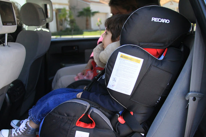 Adaptations - Car Seat and Neck Wrap - A little piece of heaven