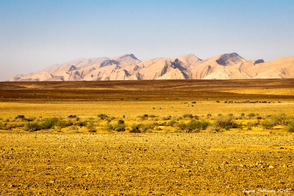 Круговая прогулка по ущелью Хатира (пустыня Негев, Израиль)