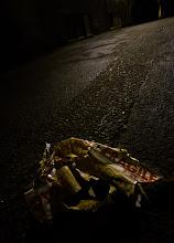 Photo: Fragile