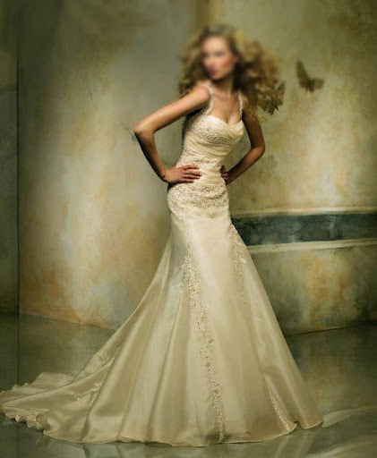 Elegant Wedding Dress Gowns