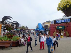 Photo: Pier 39 Tourist Attractions