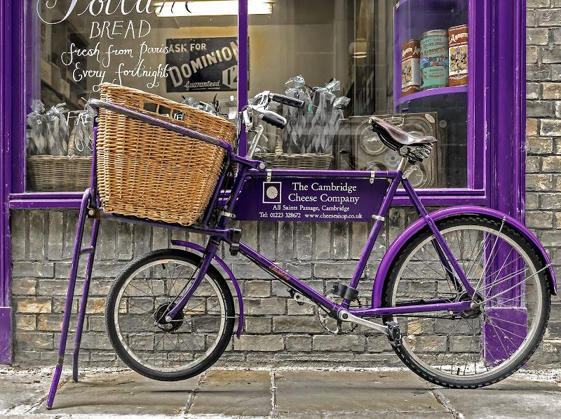 Purple bike di Caterina Ottomano